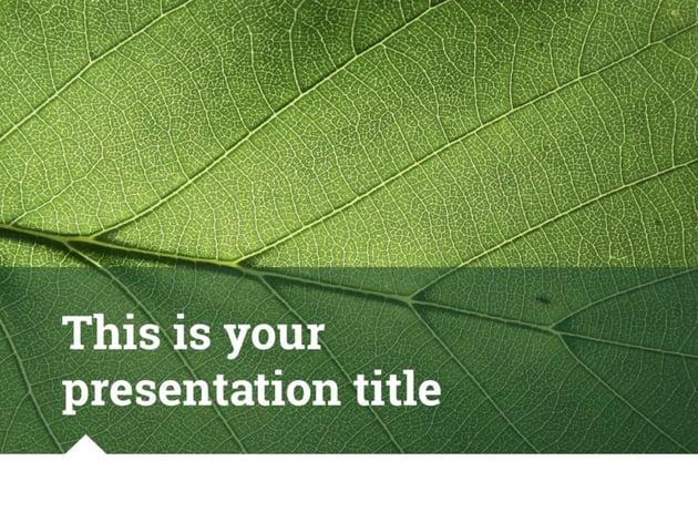 Ariel Presentation Template