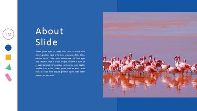 Color Fun pastels best presentation template