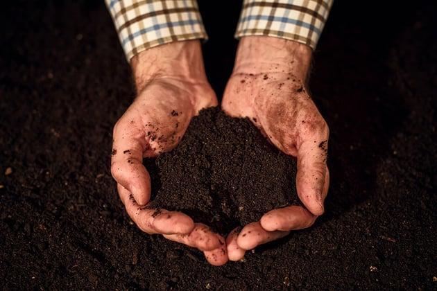 Soil Quality image