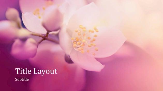 Purple PowerPoint background templates