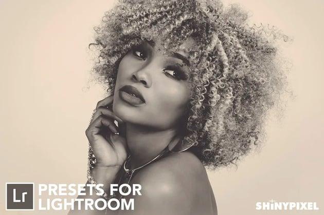 1 Lightroom presets