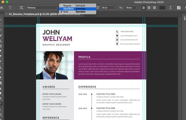 Font modern resume template