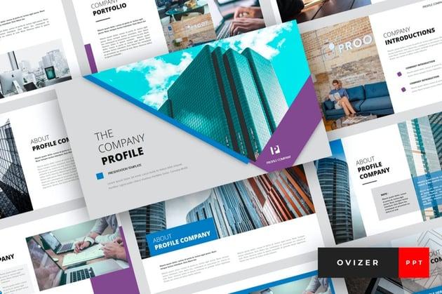 Ovizer company profile PPT