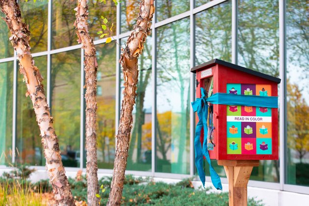 Little free library sample image
