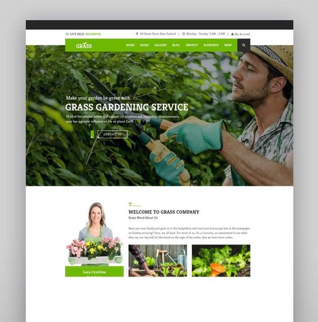 Landscape Garden WordPress - Grass