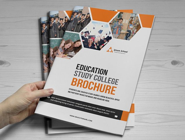 Education Brochure Design