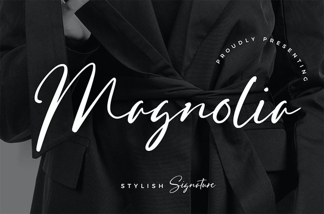 Signature Fonts from Envato Elements