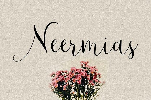 Neermias Modern Calligraphy Font OTF TTF