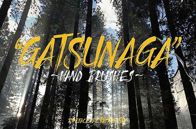 Gatsunaga - Japanese Writing Font