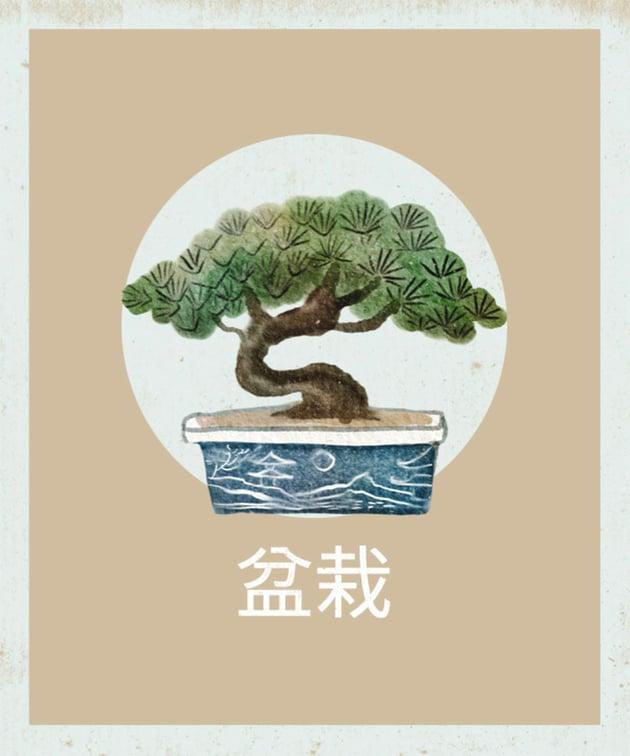 T-Shirt Design Creator with Japanese Illustration Art of a Bonsai