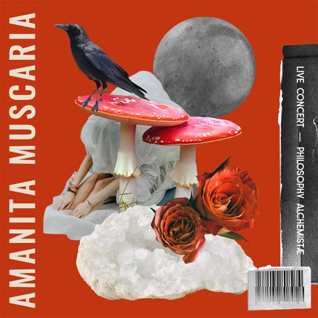 SoundCloud Album Cover Featuring Collage