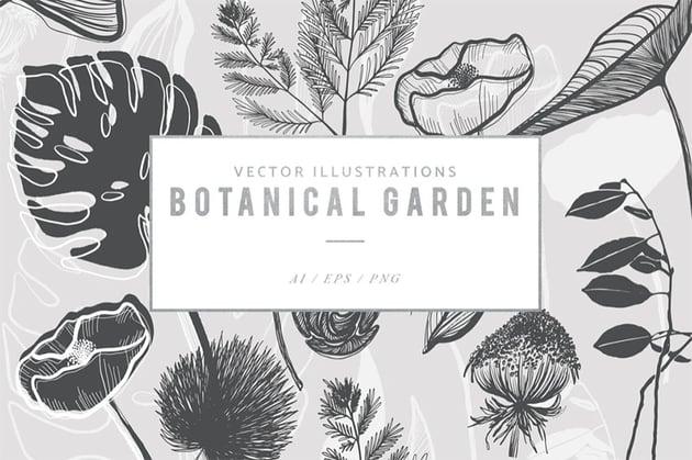 Leaf and Fern Botanical Illustration