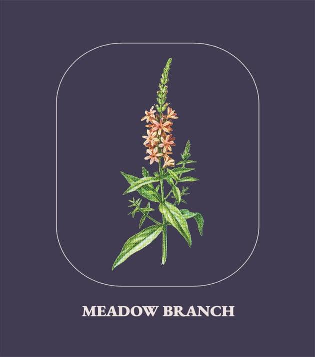 Plant Art