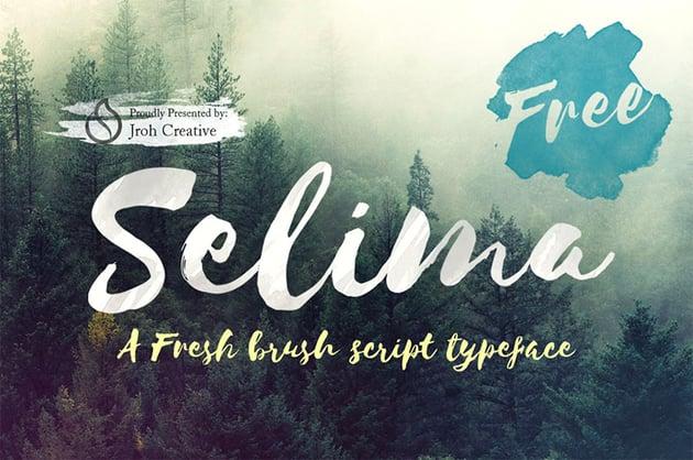 Selima Cursive Brush Font