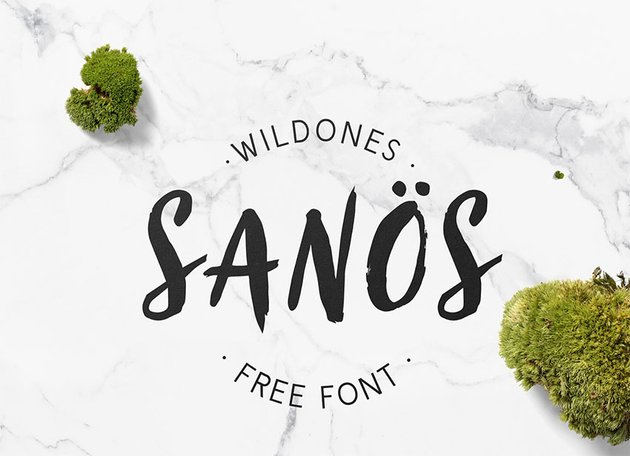 Sanos Paint Brush Font Free