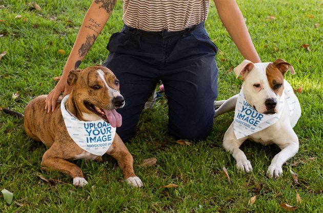 Pet Bandana Mockup of Two Dogs with Their Human