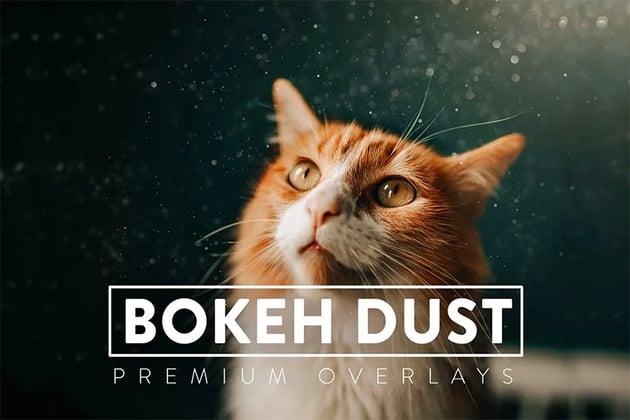 30 Bokeh Dust Overlays