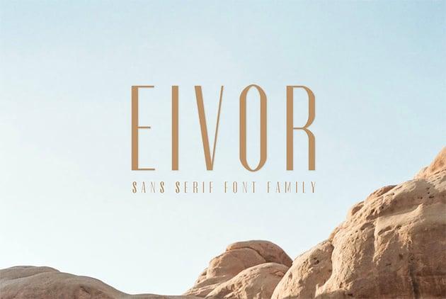 Eivor Thin Sans Serif Font