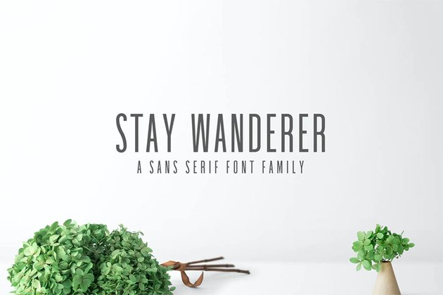 Stay Wanderer Narrow Font Thin Sans Seri