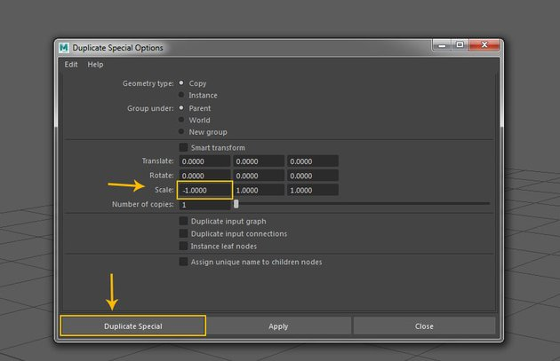 Duplicate Special Options window