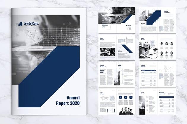 LEVIDE Corporate Nonprofit Annual Report