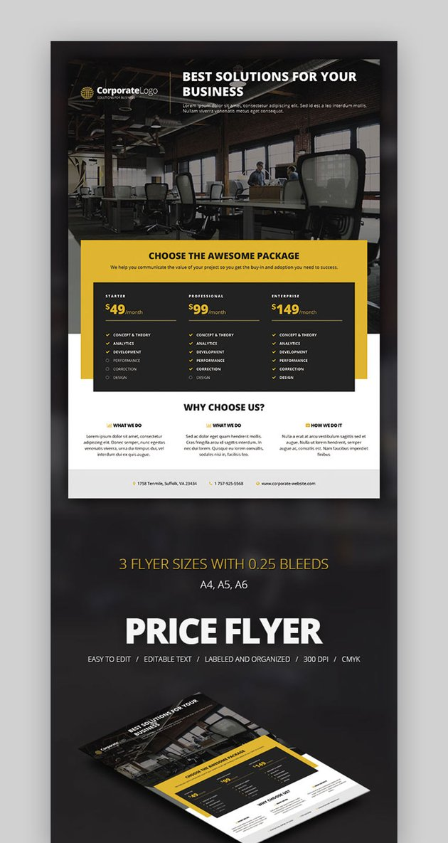 Multipurpose Price Flyer