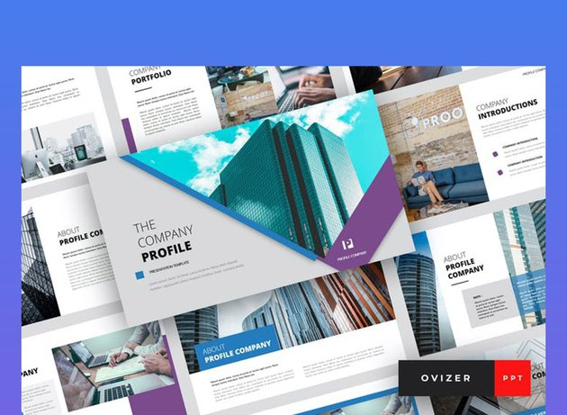 Ovizer Company Profile PowerPoint