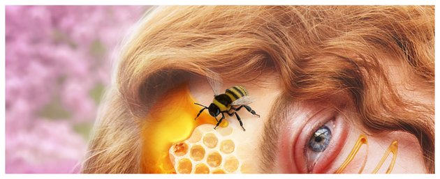 add bee