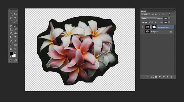 Use the brush tool to eliminate the flower background