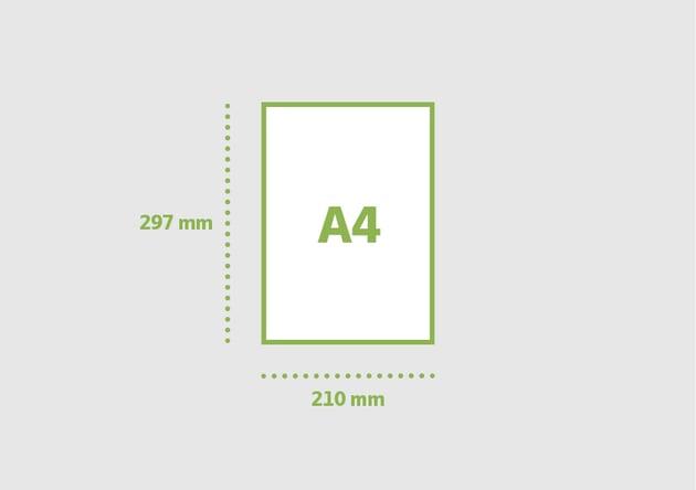 A4 210 x 297 mm