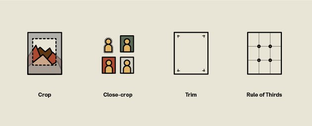 Image related terms crop close-crop trim and rule of thirds