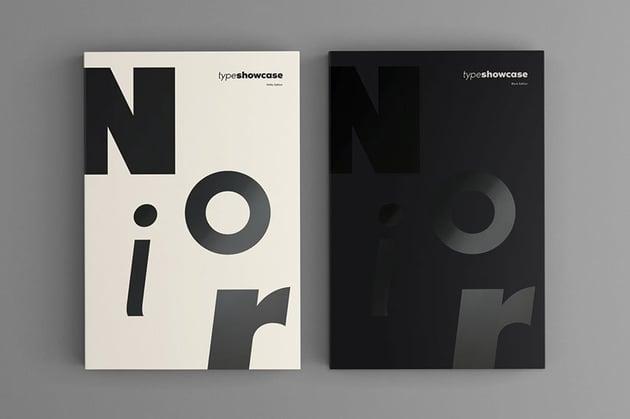 Fonts like Futura Noir Pro
