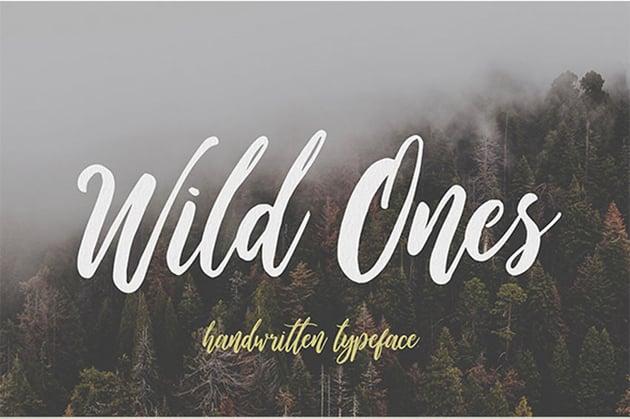 Wild Ones Script