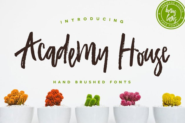 Academy House Font