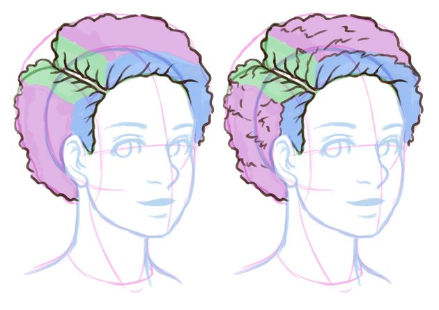 Understanding the planes of the hair