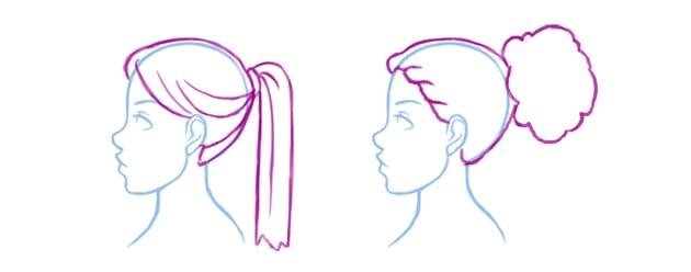 Illustration of ponytails