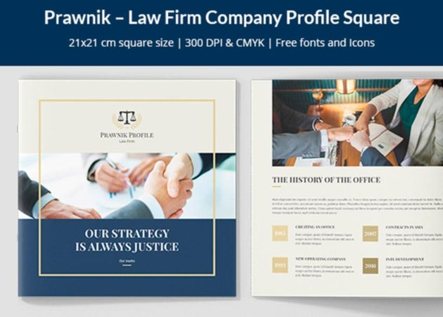 Law Firm Company Brochure