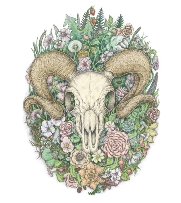 The Ram Skull by Eugenia Hauss