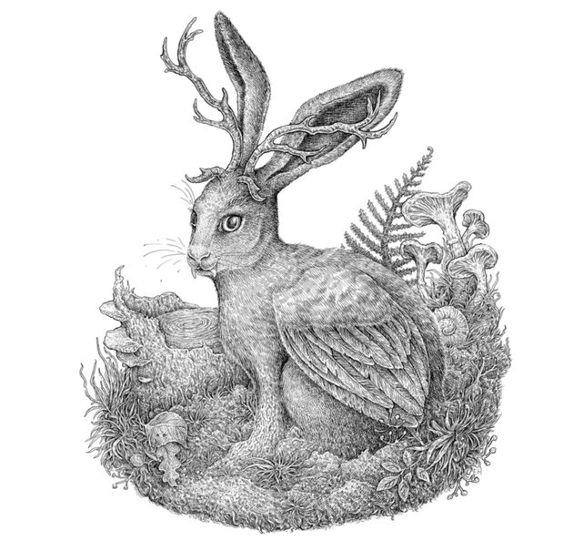 The Wolpertinger by Eugenia Hauss
