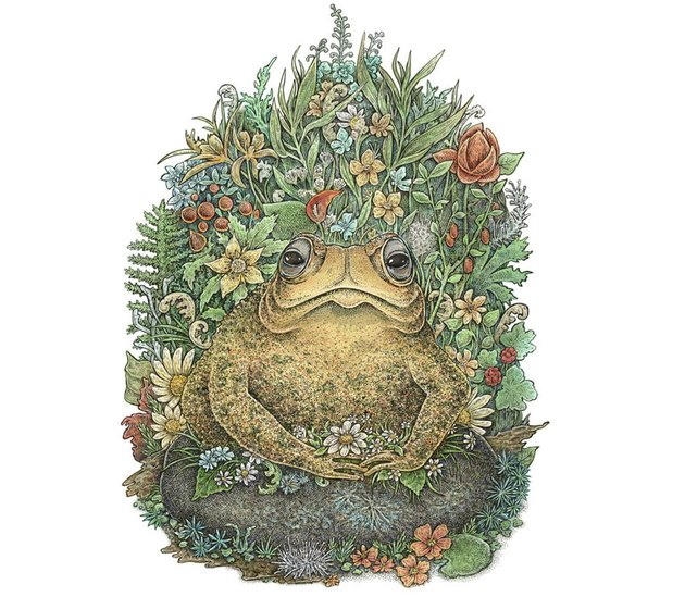 Her Majesty Toad by Eugenia Hauss