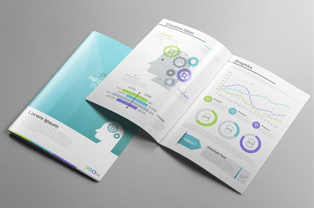 Infographic Brochures by Andrew_Kras