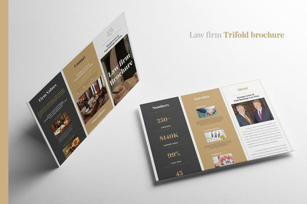 Law Firm Brochure Design Template
