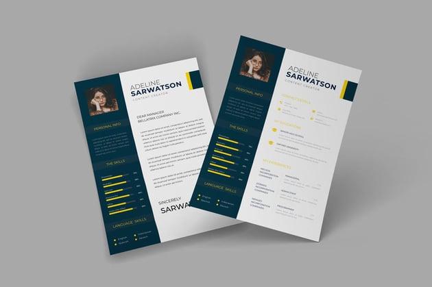 Classy CV Resume Template