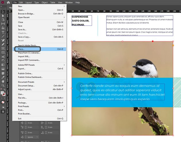 Placing Images in InDesign