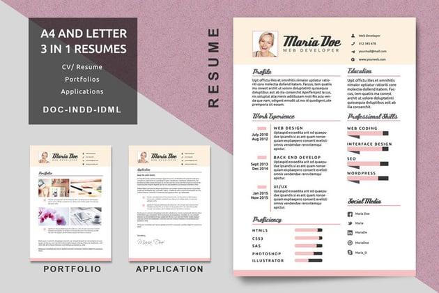Resume Template InDesign CV