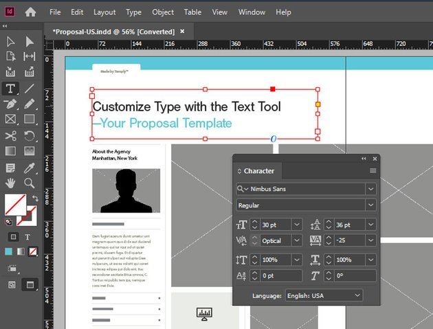 Type Tool InDesign