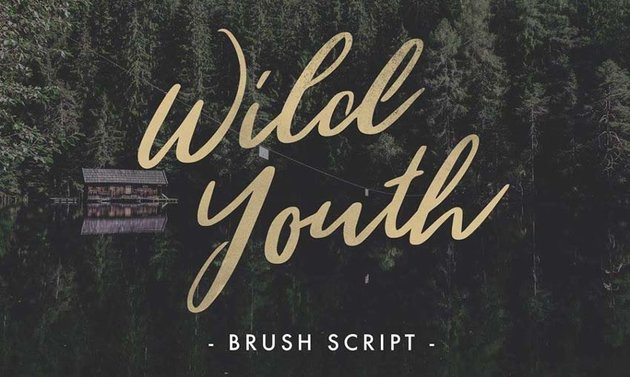 Wild Youth Free Font