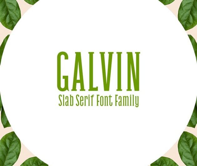 Galvin Slab Serif Font Family Pack