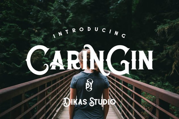 Caringin Cool Modern Fonts