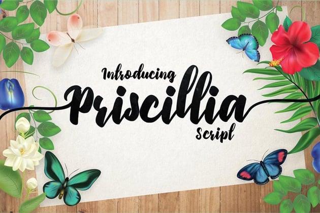 Priscillia Pretty Cricut Script Font